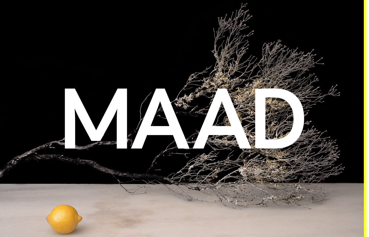 Screenshot of the website MAAD, featured on The Gallery, a curated collection of minimal websites