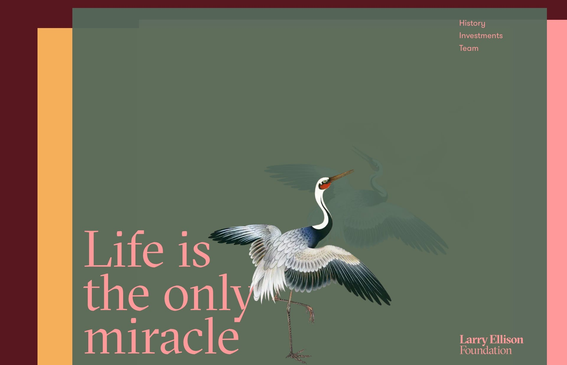 Screenshot of the website Larry Ellison Foundation, featured on The Gallery, a curated collection of minimal websites