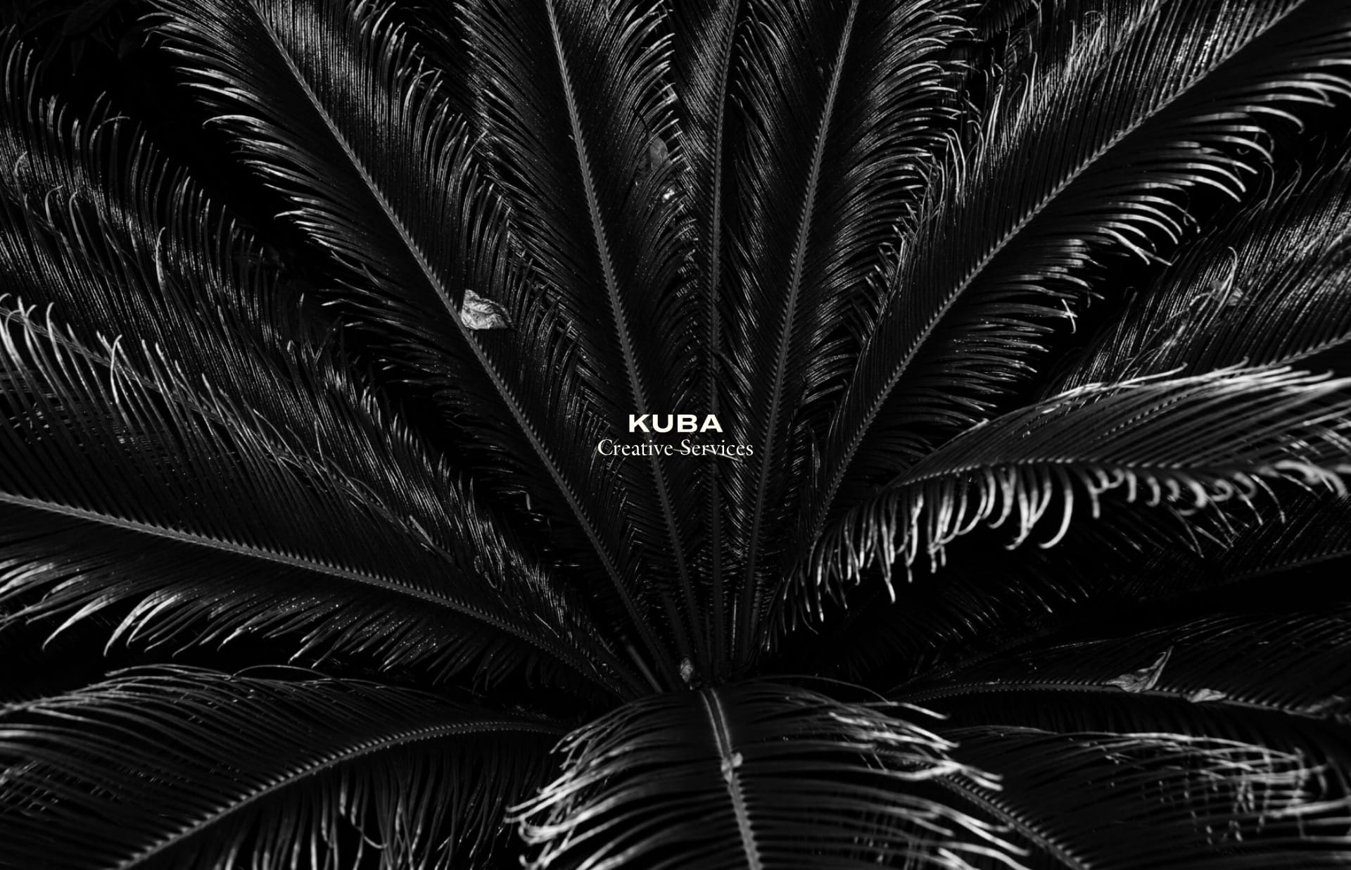 Screenshot of the website Kuba, featured on The Gallery, a curated collection of minimal websites