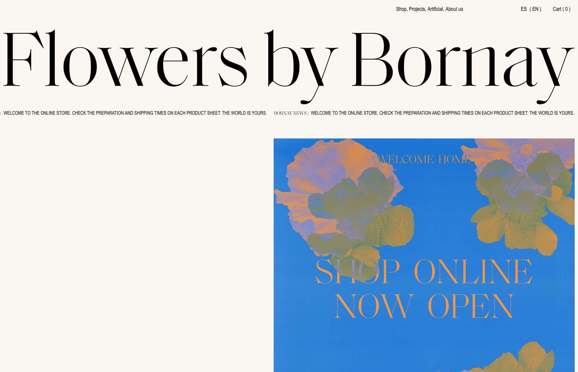 Screenshot of the website Flowers by Bornay, featured on The Gallery, a curated collection of minimal websites