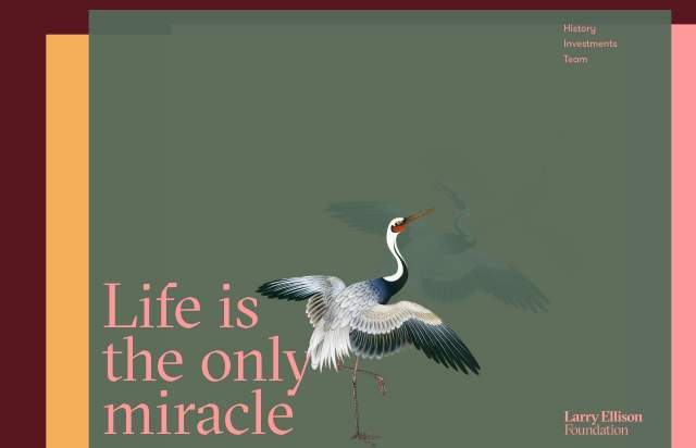 Screenshot of the homepage of the minimal website Larry Ellison Foundation, published on The Gallery on the 2019-09-12 and tagged with the tags illustrations, colourful, gt sectra, unusual scroll