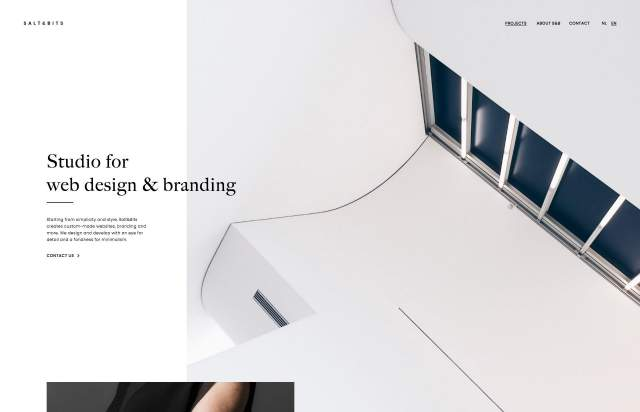 Screenshot of the homepage of the minimal website Salt&Bits, published on The Gallery on the 2019-11-06 and tagged with the tags portfolio, studio, light, small typography